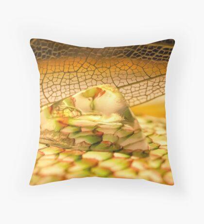Summer Stones Throw Pillow