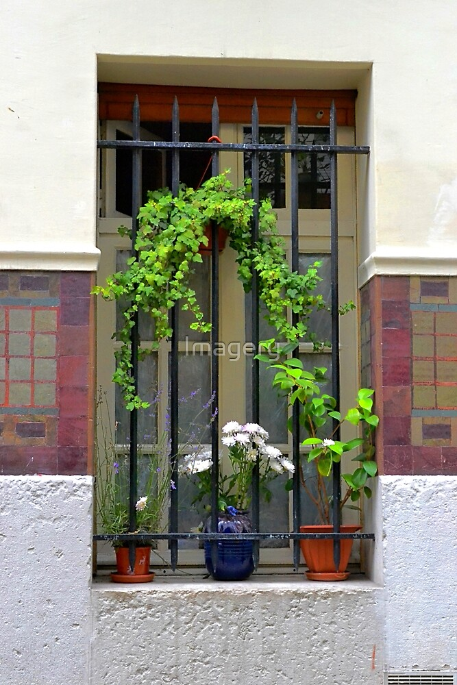 Parisian Window by Imagery