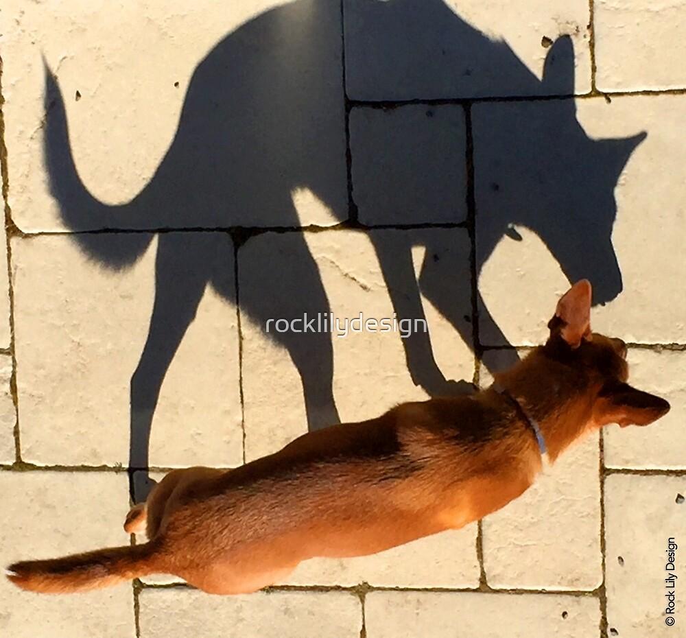 Dog Shadow by rocklilydesign