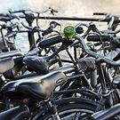 Bicycle, Bicycle, Bicycle by Kasia-D