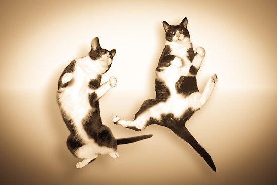 Feline It! - Sepia Version by ArtThatSmiles