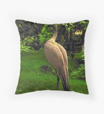 Stanley's Crane, Edinburgh Zoo Throw Pillow