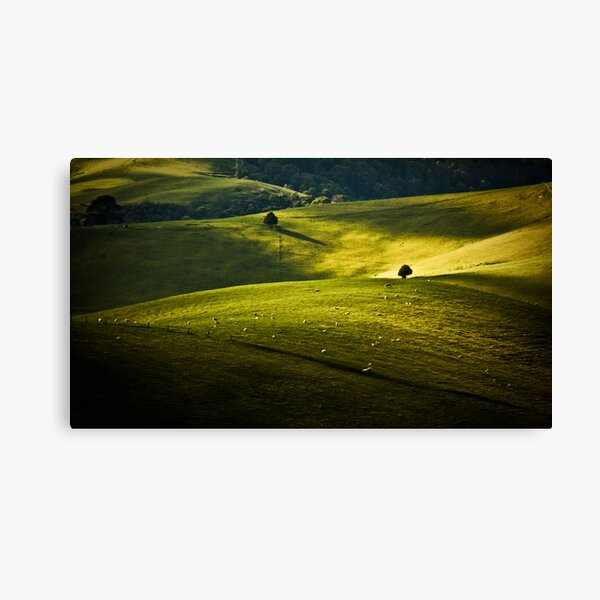 Greens and Golds Canvas Print
