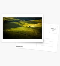 Greens and Golds Postcards