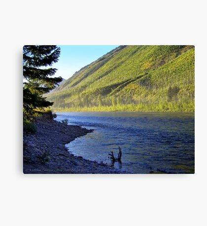 Silence (Glacier National Park, Montana, USA) Canvas Print