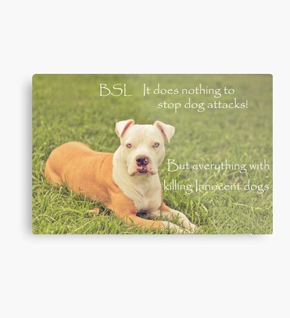 A Definition Of Breed Specific Legislation Metal Print