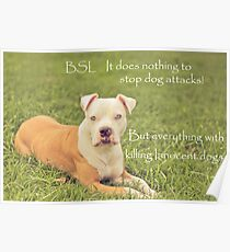 A Definition Of Breed Specific Legislation Poster
