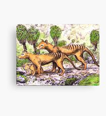 Thylacine family Canvas Print