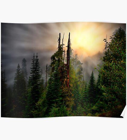 Light Me Up ~ Oregon High Cascades ~ Poster