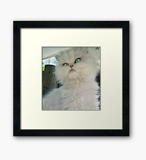 """Princess Kendra"" ~ Take A Picture It Lasts Longer ... Framed Print"