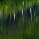 Summer Trees Reflection Impressisim by Karol Livote
