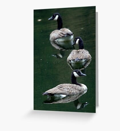Follow The Leader? Greeting Card