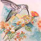 Lantana and Hummingbird by Diane Rodriguez