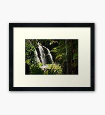 Rainforest View Framed Print