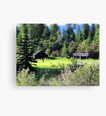 Whitefish Homestead (Montana, USA) Canvas Print