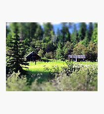 Whitefish Homestead (Montana, USA) Photographic Print