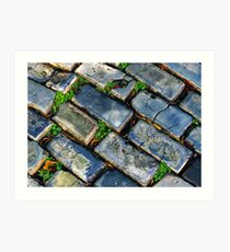 Goodbye Yellow Brick Road - Hello Blue Cobblestone Road ©  Art Print