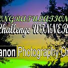 Challenge banner by Farah  Rose
