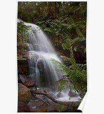 Ferntree Falls Poster