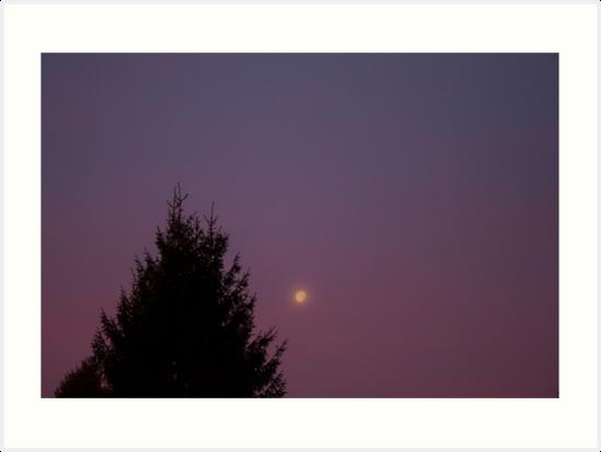 Twilight Morning 2 by Kelushan