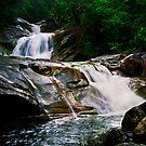 Rainforest Waterfall by Tony Lin