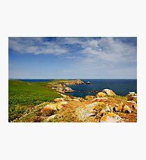 Great Saltee Island, County Wexford, Ireland Photographic Print