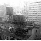 Manhattan Rain by Jeremy Watson