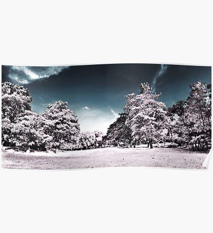 Infrarouge 2 - Panorama nature infrared mockup  Poster