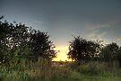Sunset x2 by cavan michaelides