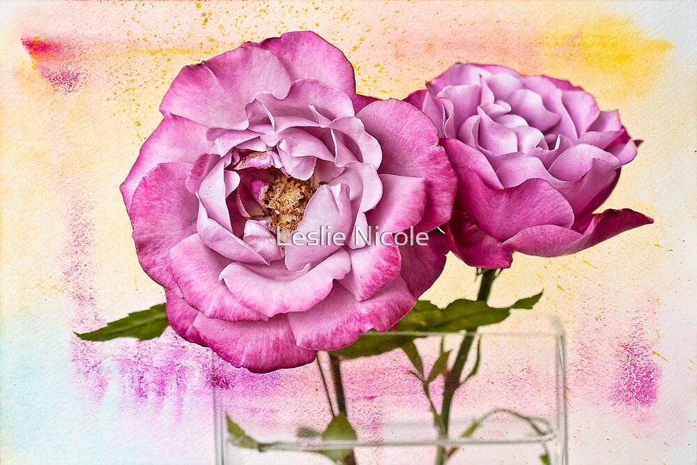 Roses Aquarelle by Leslie Nicole