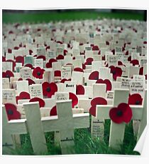 Remembrance Day - Crosses at Westminster Abbey   Poster