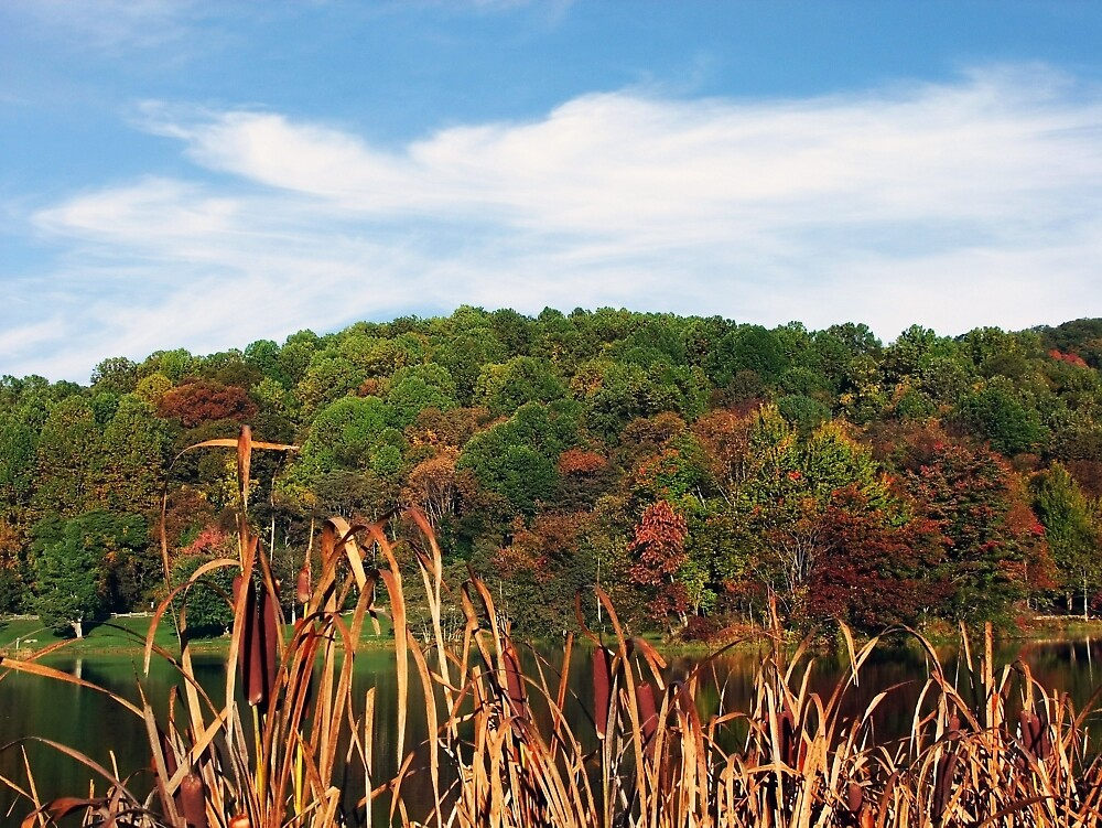 The Foothills In Autumn by RickDavis