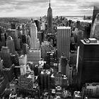 NYC: Downtown II by Nina Papiorek