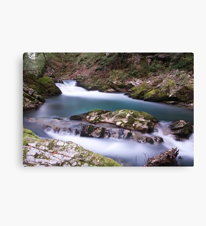 The Soteska Vintgar gorge at dawn Canvas Print