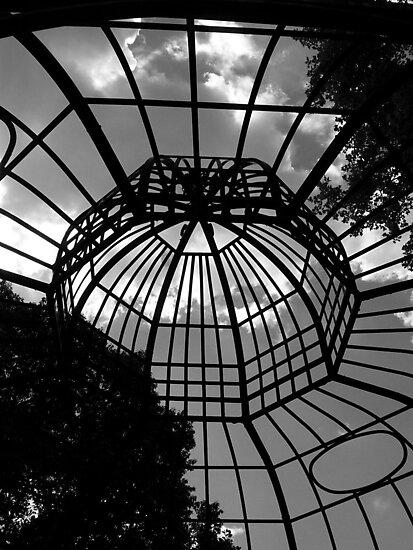 Angry cage - Philadelphia Zoo by starryskyy