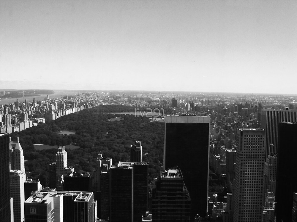 Central Park View by liv291