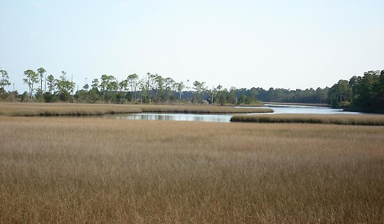 THE MARSH ON BURNT MILL CREEK by May Lattanzio