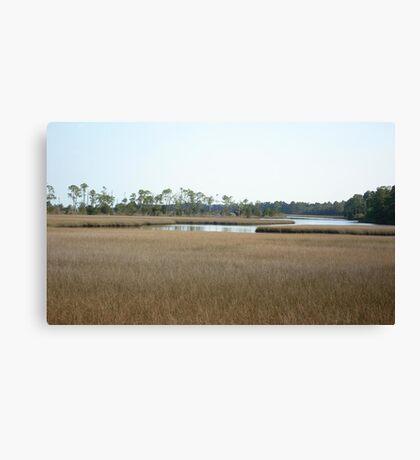 THE MARSH ON BURNT MILL CREEK Canvas Print