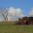 Lone tractor by Allison Sheenan