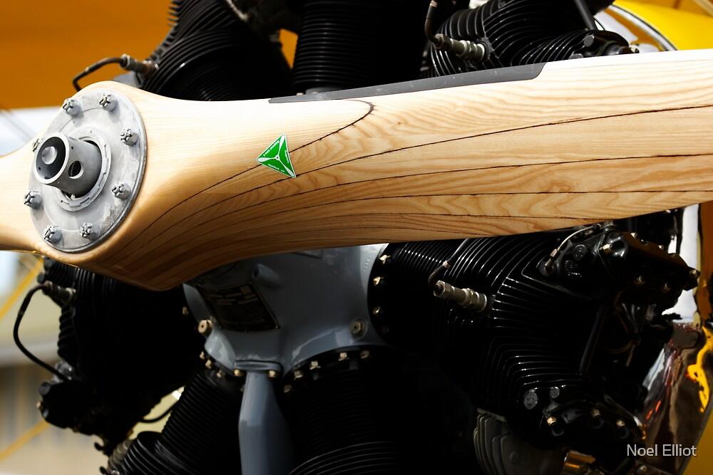 Wooden Propellor and Radial Motor by Noel Elliot