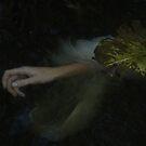 Dark Water by Alexandra Ekdahl