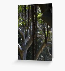 TANGLED ROOTS Greeting Card