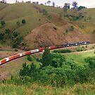 Country Train by Michael John