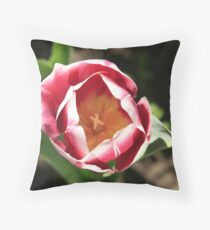 The Lady in Red Throw Pillow