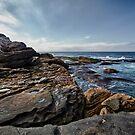 Coastal - Bondi Rocks by Adriano Carrideo