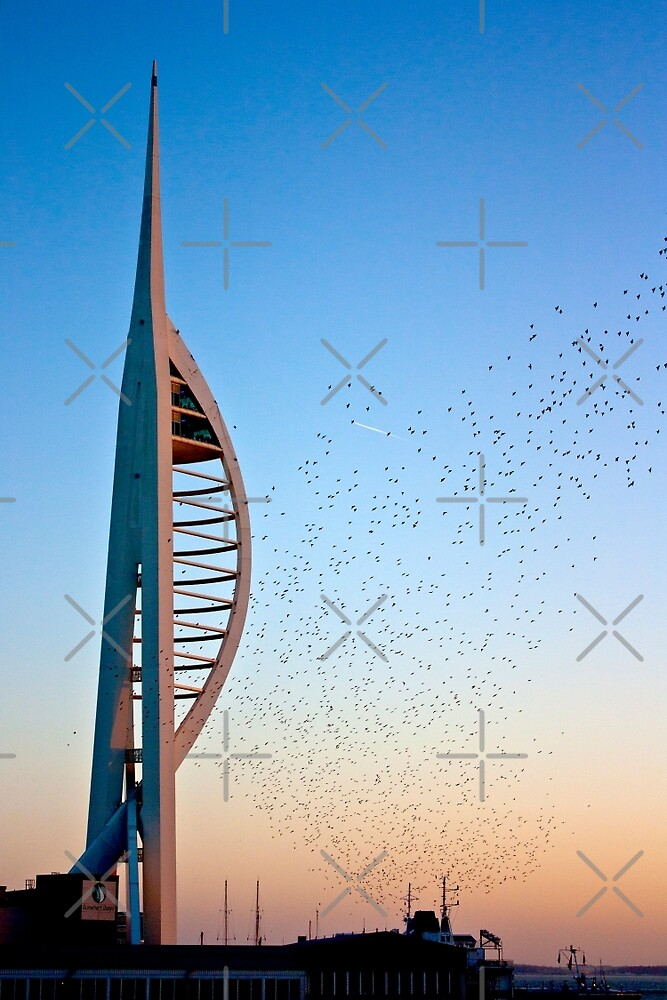 Spinnaker Tower Sunset Murmuration by Terri Waters