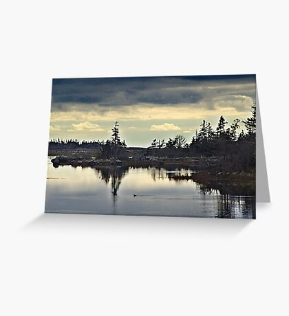 Early Morning In The Salt Marsh Greeting Card