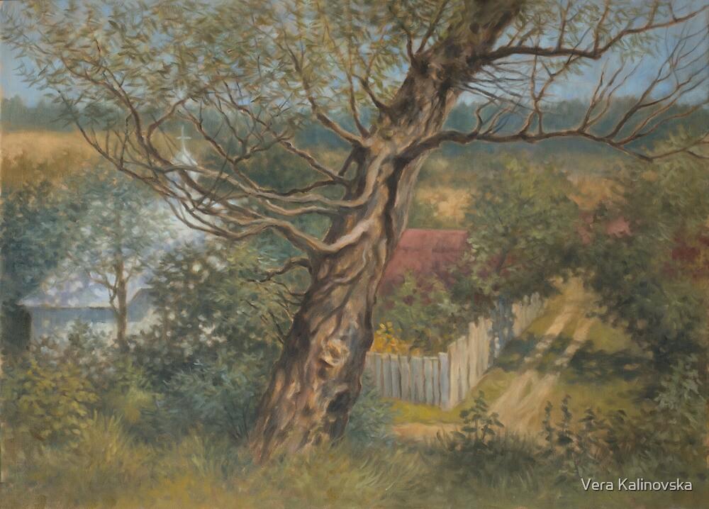 Old willow by Vira Kalinovska
