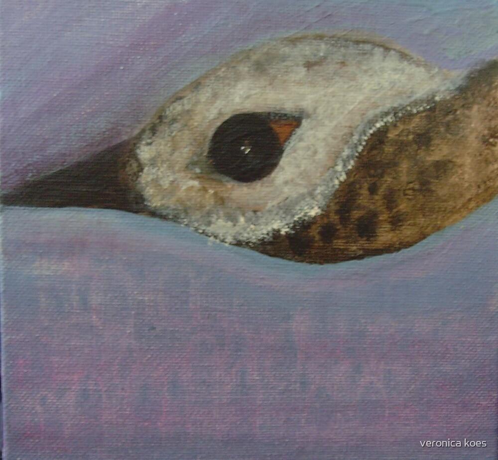 Goose by veronica j. k.
