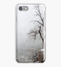 Zion Snowstorm iPhone Case/Skin